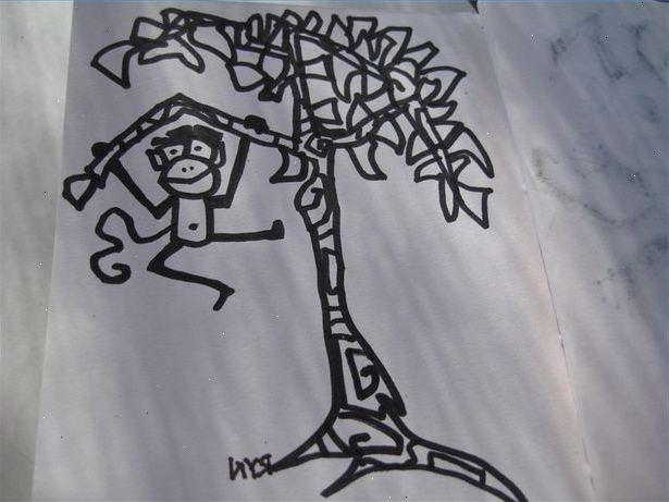 Alles vanellis dinsdag pinsdag bomen - Hoe een boom te verlichten ...