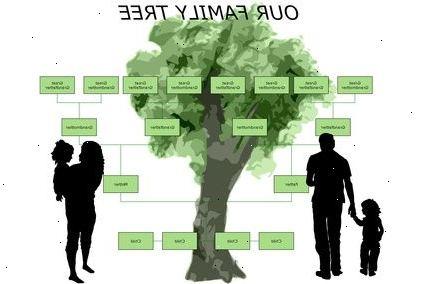 Hoe maak je een stamboom op te bouwen e2a - Hoe je je keuken op te lichten ...